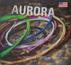 USA Strings By Aurora Acoustic 12-54 - Clearcoat Silver Medium