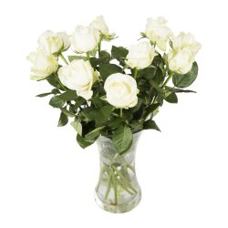 Avalanche Roses 12 Stems