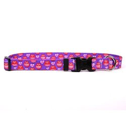 """Yellow Dog Design Valentines Owls Dog Collar With Tag-a-long Id Tag SYSTEM-MEDIUM-1"""" And Fits Neck 14 To 20"""