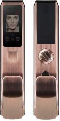 Face Recognition Keyless Smart Door Lock Digital Electronic Biometric Smart Locks Intelligent Access Card Unlock + Palm Print Unlock 7-IN-1 Unlocking