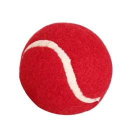 Soft Red Cricket Balls - Pack Of 10