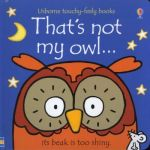 That's Not My Owl ... Board Book