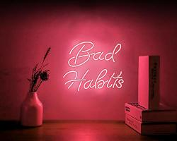 Neon Signs Bad Habits Neon Sign Neon Light Sign LED Neon Lamp Wall Sign Art Decorative Signs Lights Neon Words For Home Bedroom Room