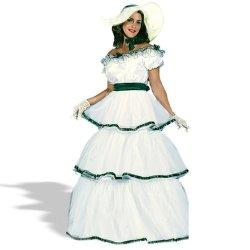 FunWorld Southern Belle Costume - Small medium - Dress Size 2-8
