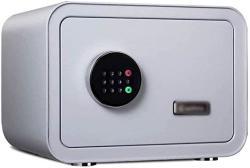 USA Wangjunxiu SAFE25CM Thicken Safes Deposit Box Household Small Office Safe Bedside Wardrobe Password Storage Box For Jewelry Documents Money Safe C