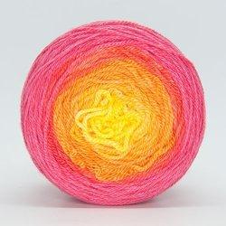 Kim Dyes Yarn Hand-dyed Gradient Yarn Filo Fingering Sangria