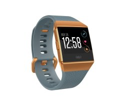 Fitbit Ionic - Copper grey