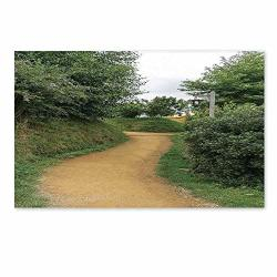 C Coaballa Hobbits Stylish Door Mat Elf Path In Woods Of Hobbit Land In The Shire New Zealand Movie Set Image Print For Office