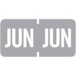 "June - Grey - Tab Products Compatible Month Labels 1 2"" X 1"" Vinyl Rolls Of 1000 Jun - Grey"