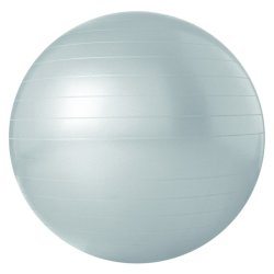 Trojan 75CM Antiburst Bodyball Grey