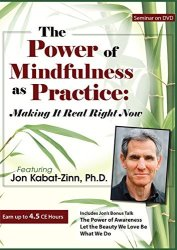 PESI Publishing & Media The Power Of Mindfulness As Practice: Making It Real Right Now