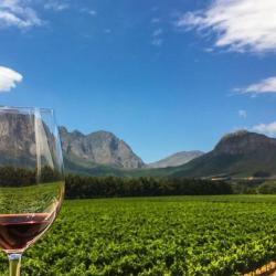 Winelands Celebration Experience - Clay Pigeon Shooting