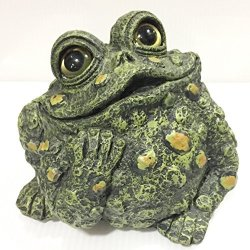 Home & Garden Large Dreamer Toad Polyresin Toad Hollow Frog 42324
