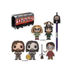 Harry Potter Funko Mystery Box Sirius Black