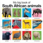 My Big Book Of South African Animals