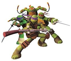 "WiggleWalls 9"" Donatello Donnie Leonardo Leo Michelangelo Mikey Raphael Raph Turtle Tmnt Teenage Mutant Ninja Turtles Removable Peel Self Stick Wall Decal Sticker Art Kids"